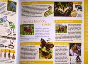 Světem-šumavské-přírody-motýli-300x218