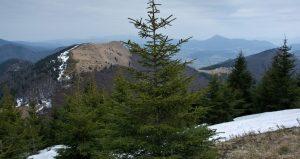 Výstup-na-Stoh-výhled-na-Osnicu-a-Chočské-vrchy-300x159